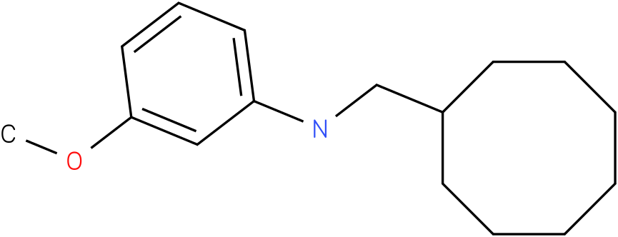 N-(cyclooctylmethyl)-3-methoxybenzenamine