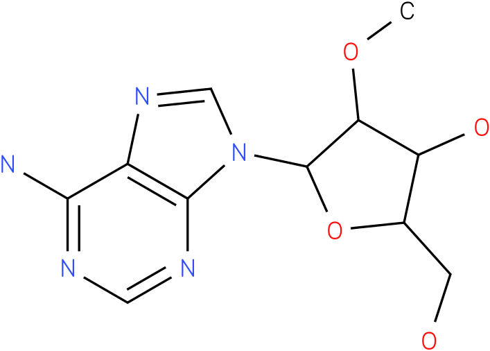 2'-O-Methyl Adenosine