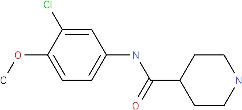 Piperidine-4-carboxylic acid (3-chloro-4-methoxy-phenyl)-amide